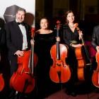 Filarmonica Mihail Jora Bacau - Formatii camerale - Partida cello