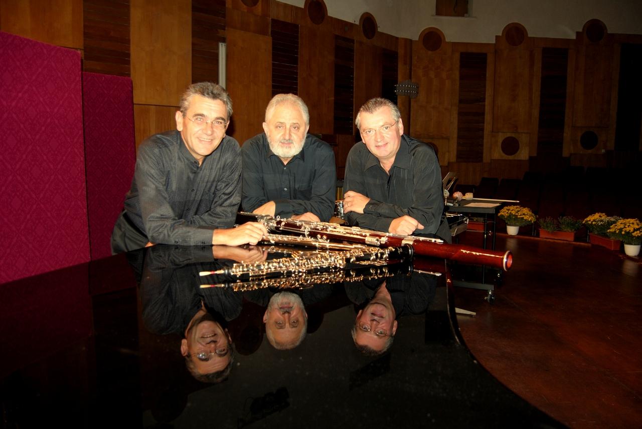 Filarmonica Mihail Jora Bacau - Formatii camerale - Trio Syrinx